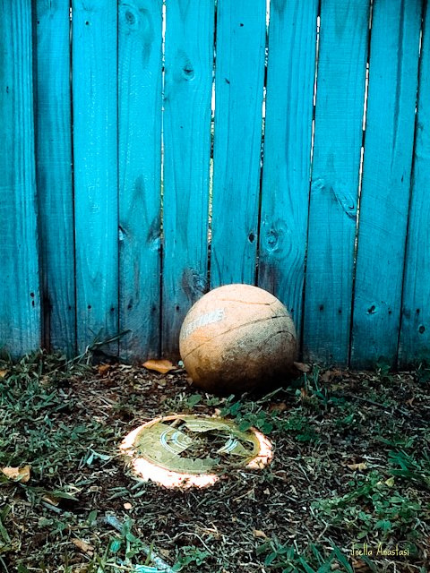 nothing left by a broken Frisbee by namestartswithj89 via Flickr